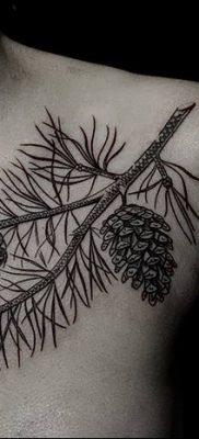 фото тату сосна от 31.07.2018 №105 – tattoo pine – tatufoto.com