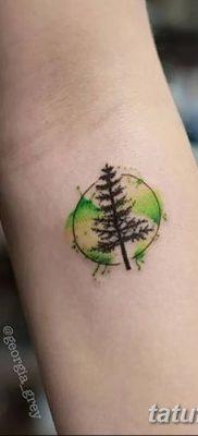 фото тату сосна от 31.07.2018 №115 – tattoo pine – tatufoto.com