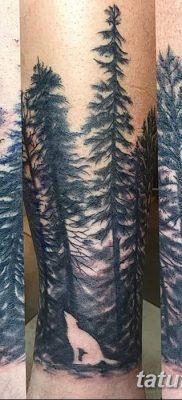 фото тату сосна от 31.07.2018 №116 – tattoo pine – tatufoto.com