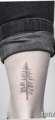 фото тату сосна от 31.07.2018 №122 – tattoo pine – tatufoto.com