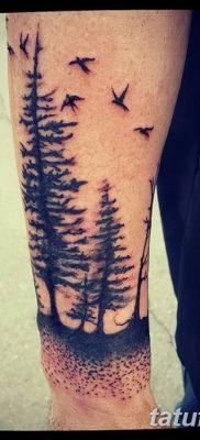 фото тату сосна от 31.07.2018 №142 – tattoo pine – tatufoto.com