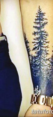 фото тату сосна от 31.07.2018 №150 – tattoo pine – tatufoto.com