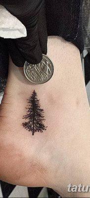 фото тату сосна от 31.07.2018 №155 – tattoo pine – tatufoto.com