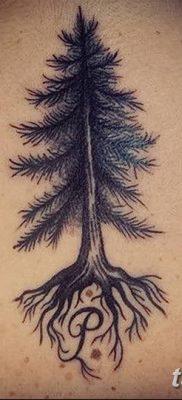 фото тату сосна от 31.07.2018 №159 – tattoo pine – tatufoto.com