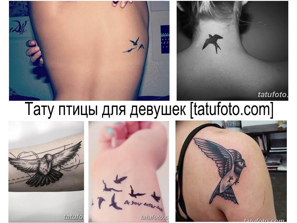 Значение тату птицы для девушек - коллекция фото примеров готовых рисунков татуировки