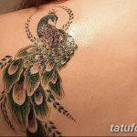 Фото Женские тату 25.08.2018 №073 - Women's Tattoo - tatufoto.com