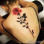 Фото Женские тату 25.08.2018 №123 - Women's Tattoo - tatufoto.com