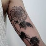 Фото Женские тату 25.08.2018 №602 - Women's Tattoo - tatufoto.com