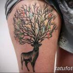 Фото Тату лайнворк от 17.08.2018 №179 - tattoo laynvork - tatufoto.com