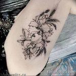 Фото Тату лайнворк от 17.08.2018 №278 - tattoo laynvork - tatufoto.com