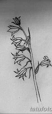 Фото рисунок тату цветок колокольчик от 10.08.2018 №003 – flower bell tatto – tatufoto.com