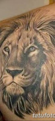 Фото тату голова льва от 08.08.2018 №002 – tattoo head of a lion – tatufoto.com