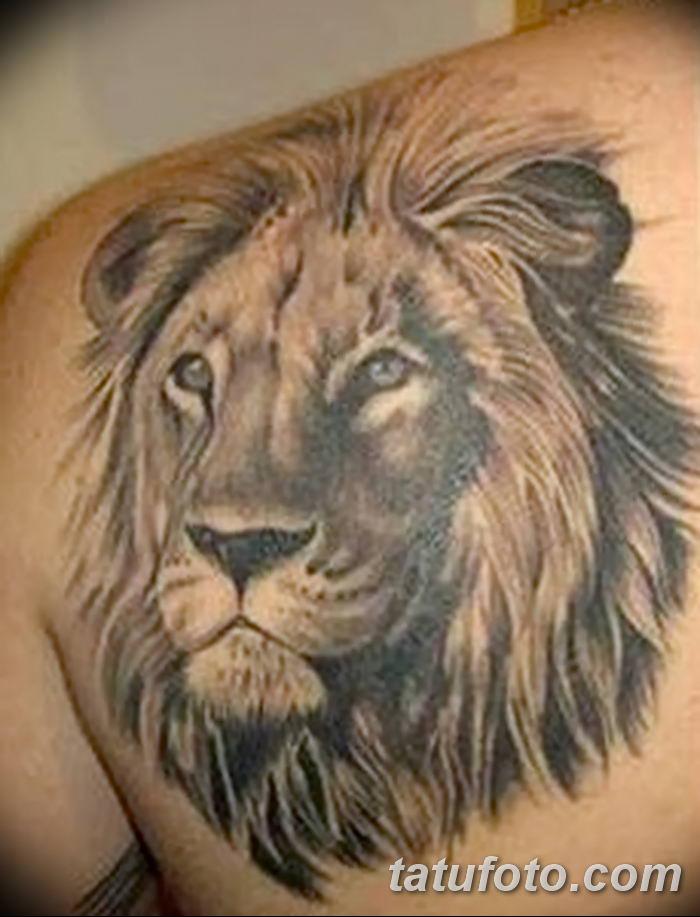 Фото тату голова льва от 08.08.2018 №002 - tattoo head of a lion - tatufoto.com