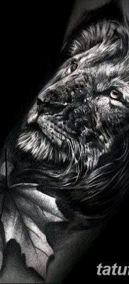 Фото тату голова льва от 08.08.2018 №006 – tattoo head of a lion – tatufoto.com