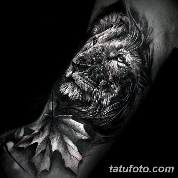 Фото тату голова льва от 08.08.2018 №006 - tattoo head of a lion - tatufoto.com