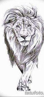 Фото тату голова льва от 08.08.2018 №015 – tattoo head of a lion – tatufoto.com
