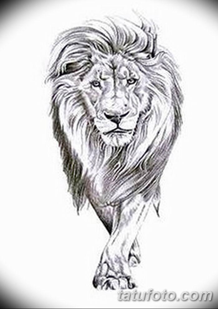 Фото тату голова льва от 08.08.2018 №015 - tattoo head of a lion - tatufoto.com