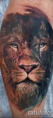 Фото тату голова льва от 08.08.2018 №024 – tattoo head of a lion – tatufoto.com
