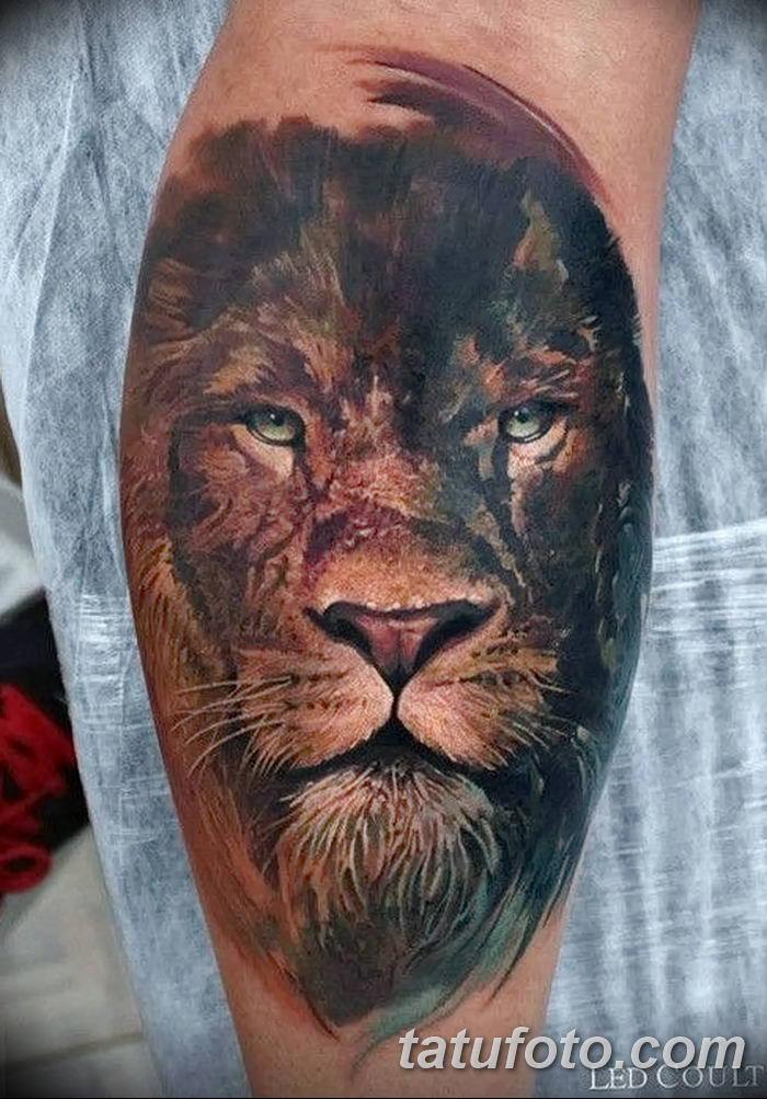 Фото тату голова льва от 08.08.2018 №024 - tattoo head of a lion - tatufoto.com