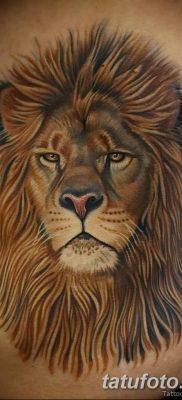 Фото тату голова льва от 08.08.2018 №027 – tattoo head of a lion – tatufoto.com