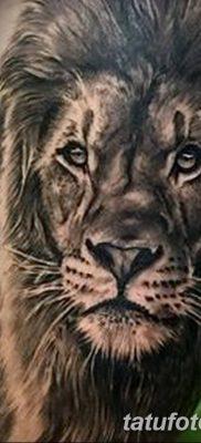 Фото тату голова льва от 08.08.2018 №029 – tattoo head of a lion – tatufoto.com