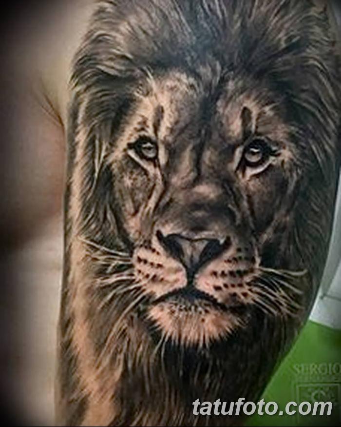Фото тату голова льва от 08.08.2018 №029 - tattoo head of a lion - tatufoto.com