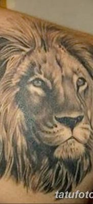Фото тату голова льва от 08.08.2018 №030 – tattoo head of a lion – tatufoto.com