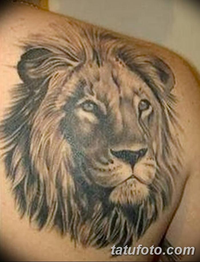 Фото тату голова льва от 08.08.2018 №030 - tattoo head of a lion - tatufoto.com