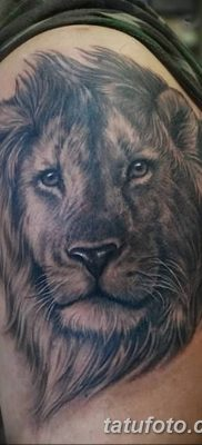 Фото тату голова льва от 08.08.2018 №031 – tattoo head of a lion – tatufoto.com