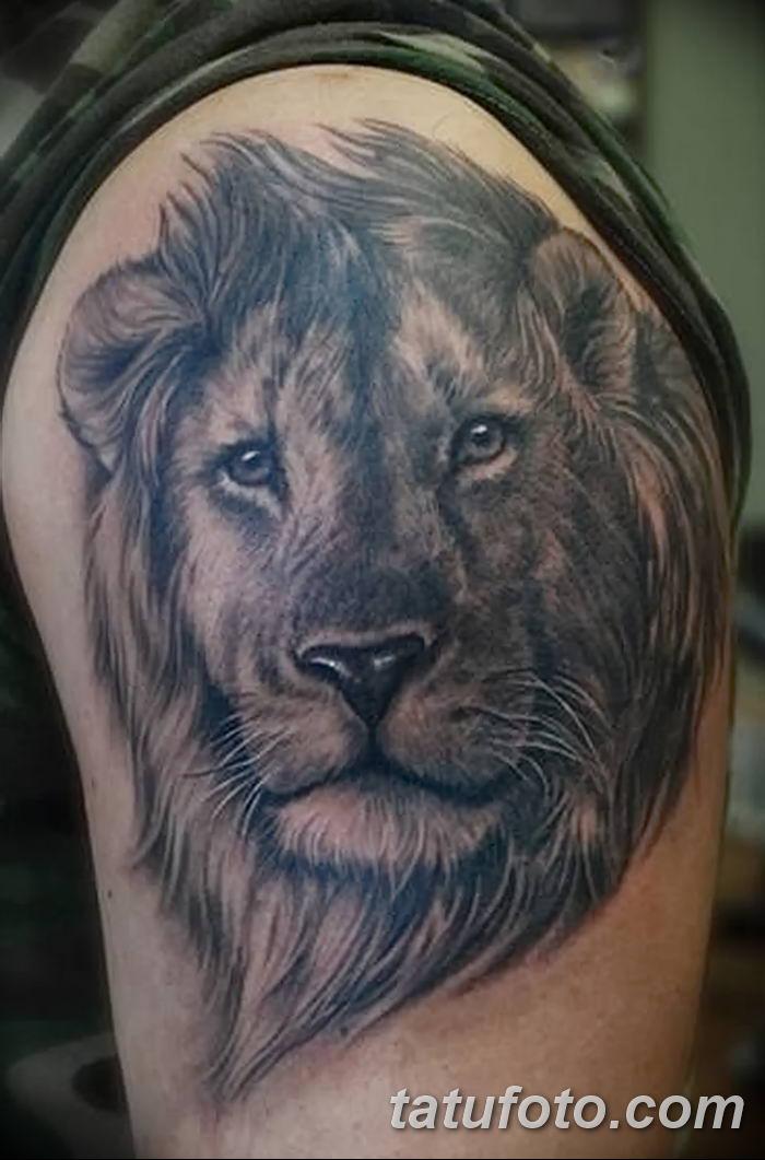 Фото тату голова льва от 08.08.2018 №031 - tattoo head of a lion - tatufoto.com