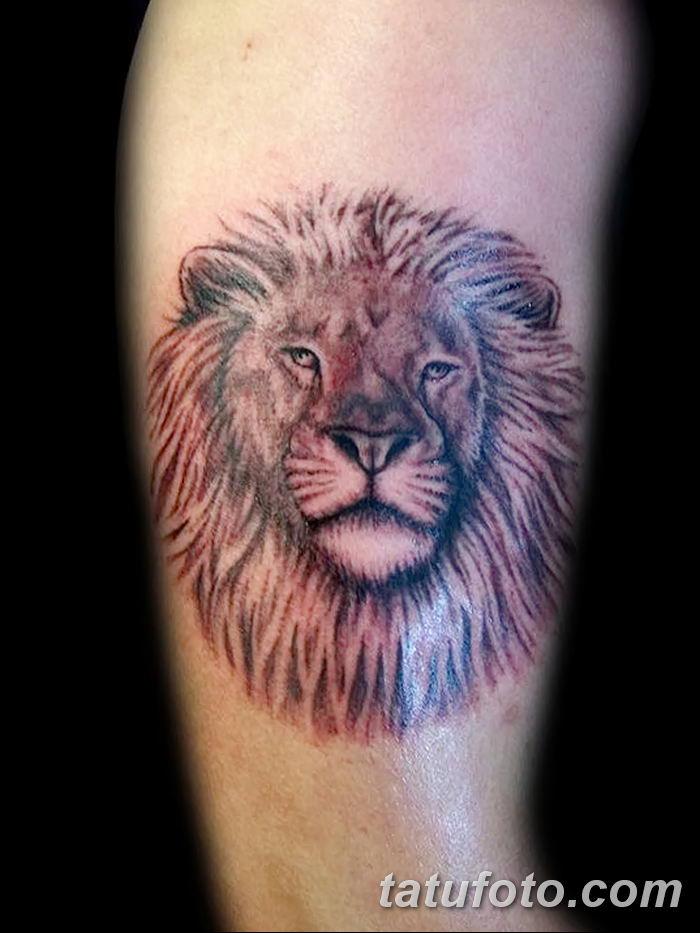 Фото тату голова льва от 08.08.2018 №035 - tattoo head of a lion - tatufoto.com