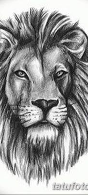 Фото тату голова льва от 08.08.2018 №038 – tattoo head of a lion – tatufoto.com