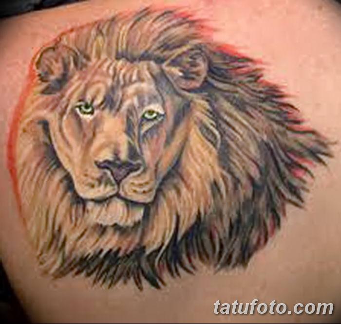 Фото тату голова льва от 08.08.2018 №041 - tattoo head of a lion - tatufoto.com