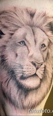 Фото тату голова льва от 08.08.2018 №047 – tattoo head of a lion – tatufoto.com