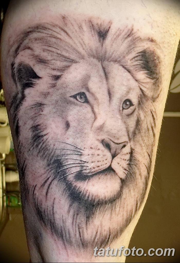 Фото тату голова льва от 08.08.2018 №047 - tattoo head of a lion - tatufoto.com
