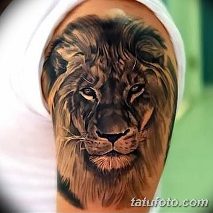 Фото тату голова льва от 08.08.2018 №048 - tattoo head of a lion - tatufoto.com