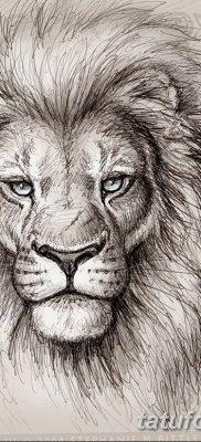 Фото тату голова льва от 08.08.2018 №049 – tattoo head of a lion – tatufoto.com