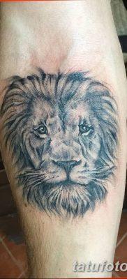 Фото тату голова льва от 08.08.2018 №052 – tattoo head of a lion – tatufoto.com