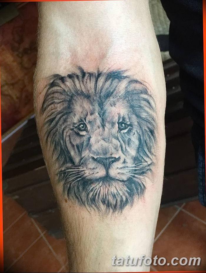 Фото тату голова льва от 08.08.2018 №052 - tattoo head of a lion - tatufoto.com