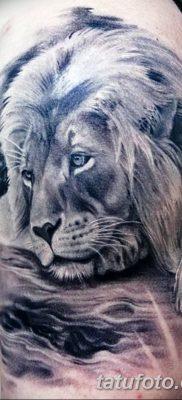Фото тату голова льва от 08.08.2018 №053 – tattoo head of a lion – tatufoto.com