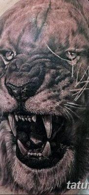 Фото тату голова льва от 08.08.2018 №054 – tattoo head of a lion – tatufoto.com