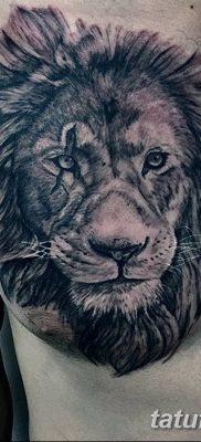 Фото тату голова льва от 08.08.2018 №120 – tattoo head of a lion – tatufoto.com