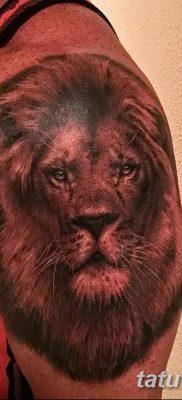Фото тату голова льва от 08.08.2018 №125 – tattoo head of a lion – tatufoto.com