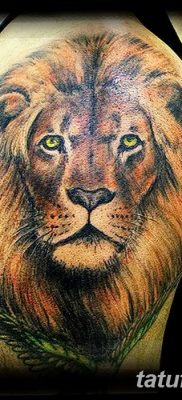 Фото тату голова льва от 08.08.2018 №126 – tattoo head of a lion – tatufoto.com