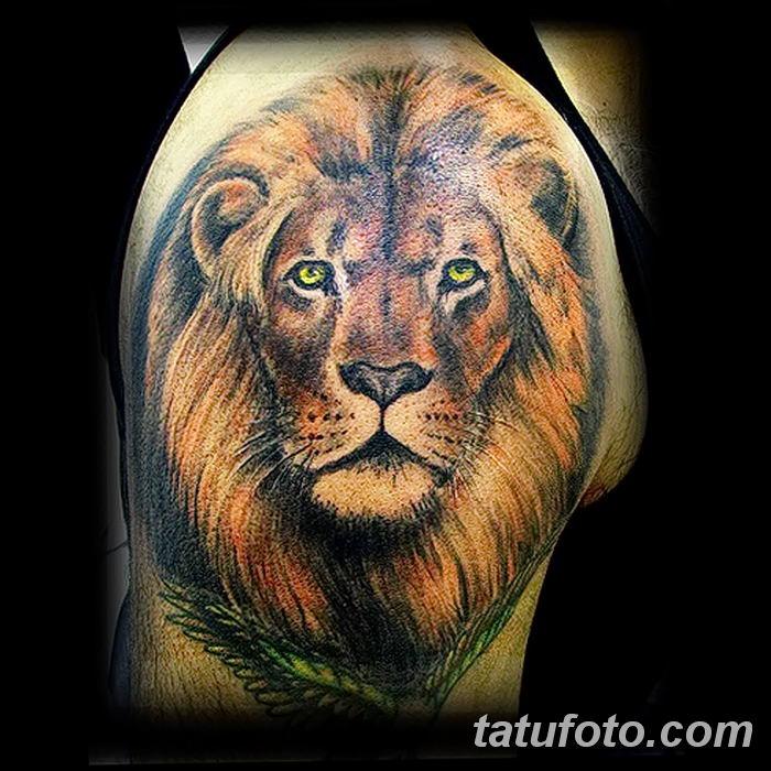 Фото тату голова льва от 08.08.2018 №126 - tattoo head of a lion - tatufoto.com