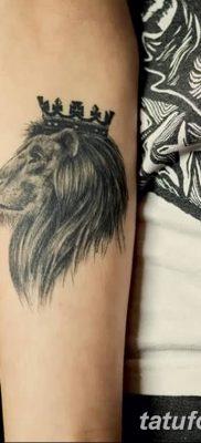 Фото тату голова льва от 08.08.2018 №128 – tattoo head of a lion – tatufoto.com