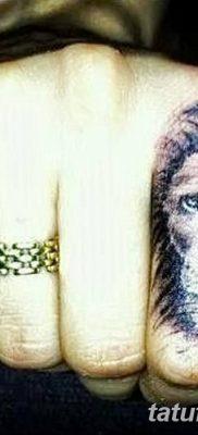 Фото тату голова льва от 08.08.2018 №133 – tattoo head of a lion – tatufoto.com
