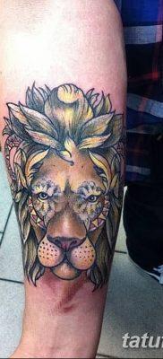 Фото тату голова льва от 08.08.2018 №136 – tattoo head of a lion – tatufoto.com