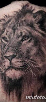 Фото тату голова льва от 08.08.2018 №151 – tattoo head of a lion – tatufoto.com