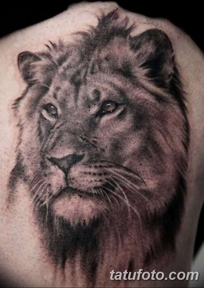 Фото тату голова льва от 08.08.2018 №151 - tattoo head of a lion - tatufoto.com